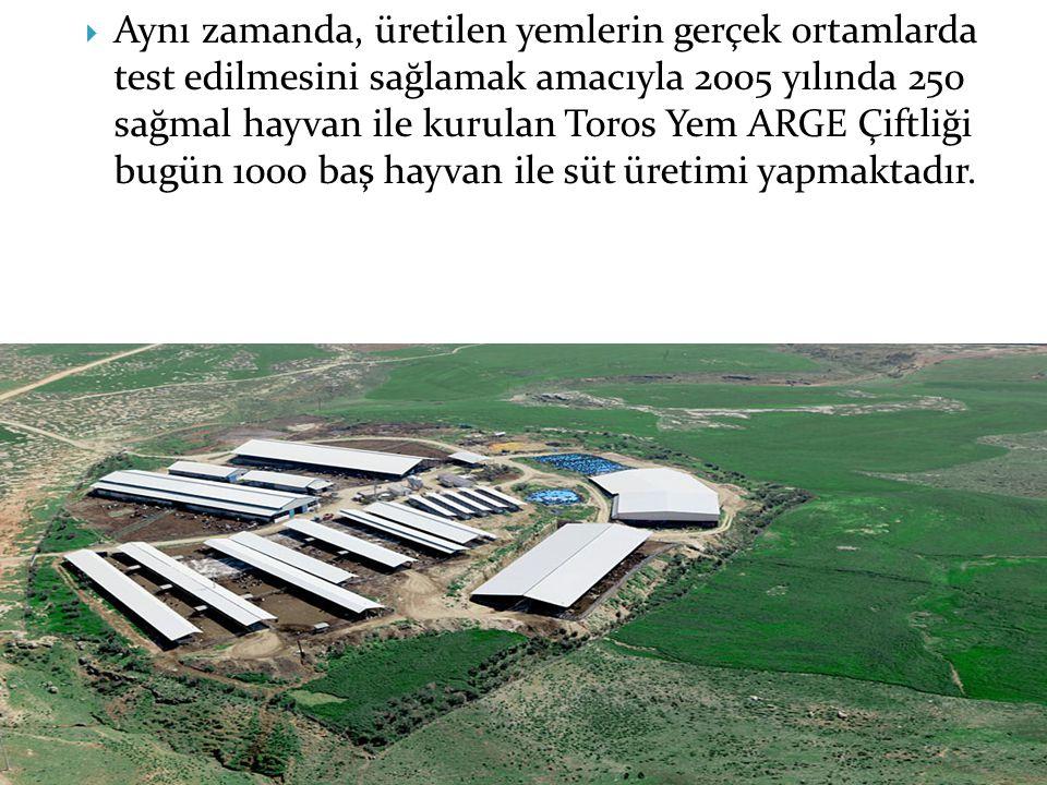 Aynı zamanda, üretilen yemlerin gerçek ortamlarda test edilmesini sağlamak amacıyla 2005 yılında 250 sağmal hayvan ile kurulan Toros Yem ARGE Çiftliği bugün 1000 baş hayvan ile süt üretimi yapmaktadır.