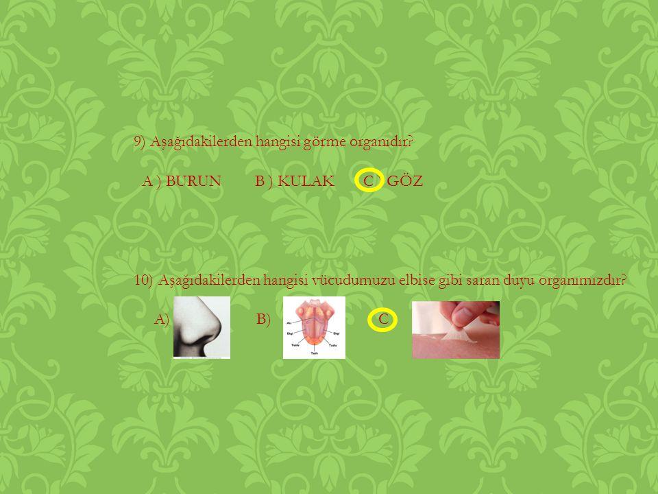 9) Aşağıdakilerden hangisi görme organıdır