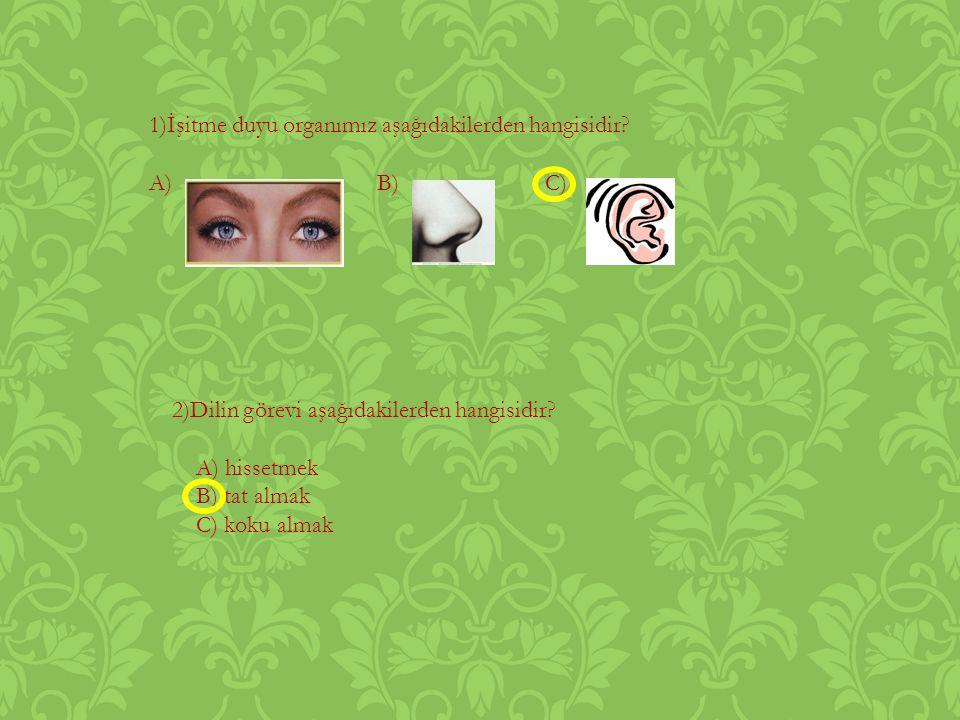 1)İşitme duyu organımız aşağıdakilerden hangisidir