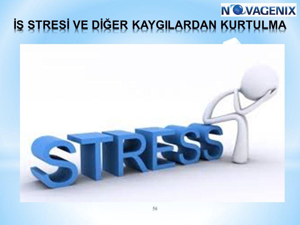 İŞ STRESİ VE DİĞER KAYGILARDAN KURTULMA
