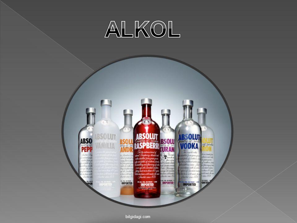 ALKOL bilgidagi.com