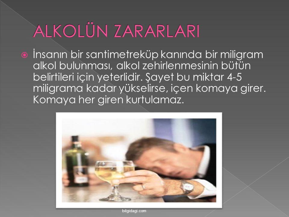 ALKOLÜN ZARARLARI