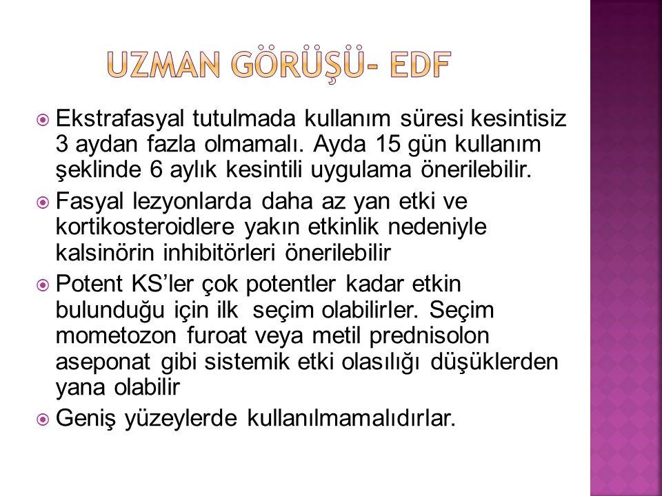 UZMAN GÖRÜŞÜ- EDF