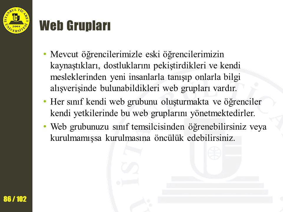 Web Grupları