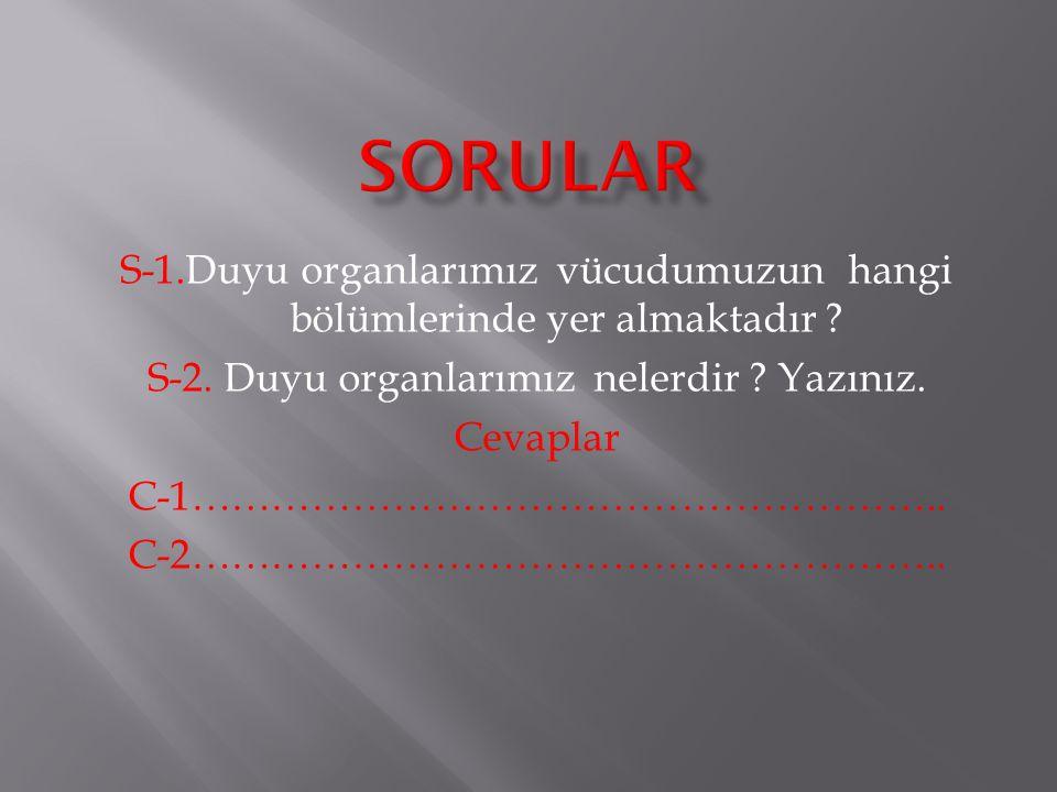 Sorular S-1.Duyu organlarımız vücudumuzun hangi bölümlerinde yer almaktadır S-2. Duyu organlarımız nelerdir Yazınız.
