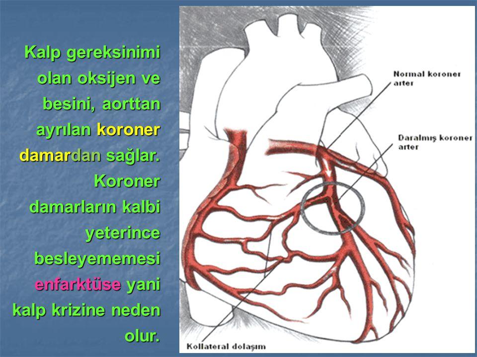 Kalp gereksinimi olan oksijen ve besini, aorttan ayrılan koroner damardan sağlar.