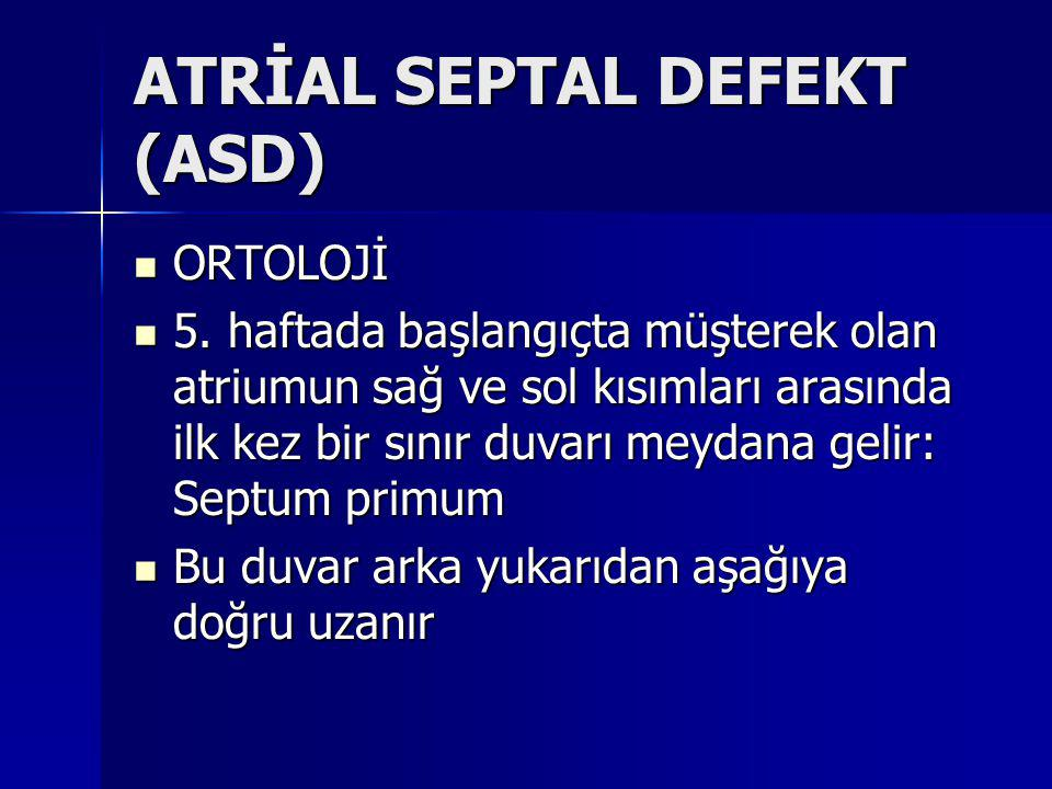 ATRİAL SEPTAL DEFEKT (ASD)