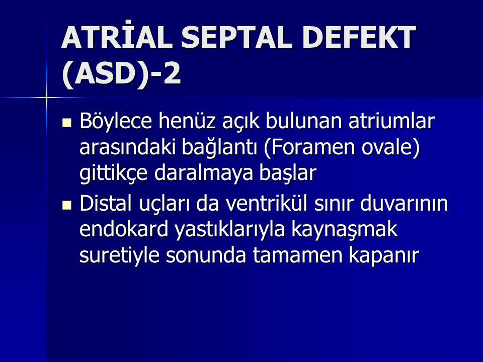 ATRİAL SEPTAL DEFEKT (ASD)-2
