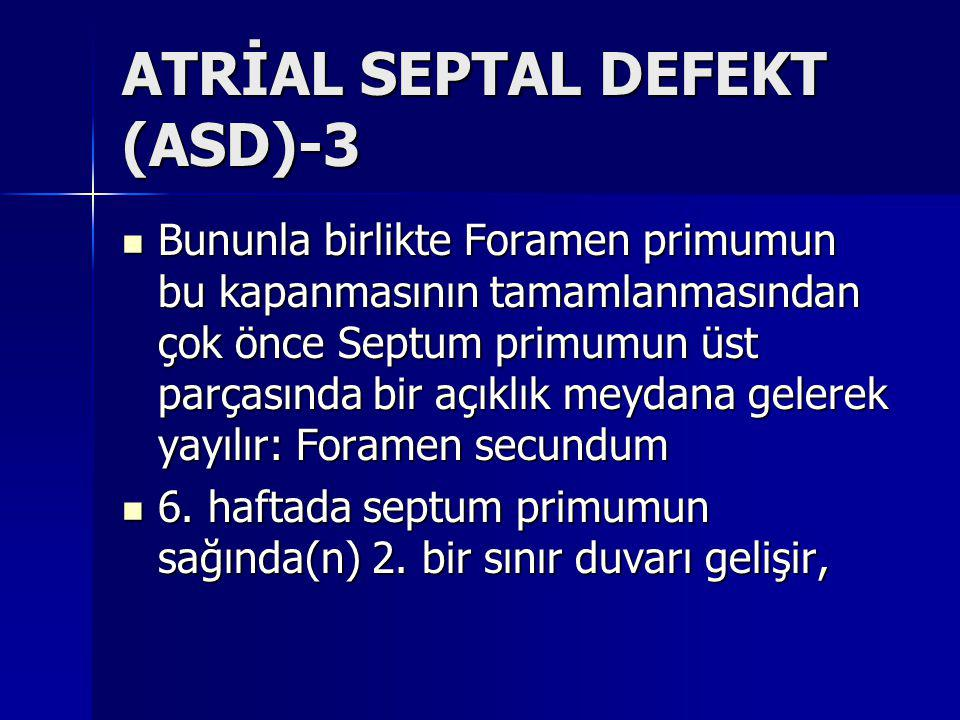 ATRİAL SEPTAL DEFEKT (ASD)-3