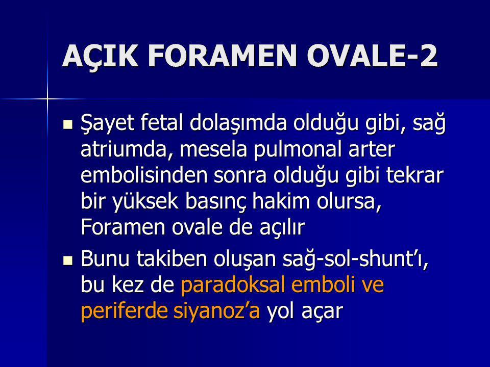 AÇIK FORAMEN OVALE-2