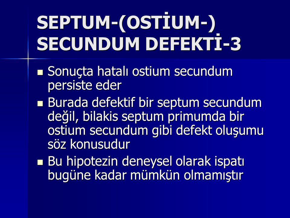 SEPTUM-(OSTİUM-) SECUNDUM DEFEKTİ-3