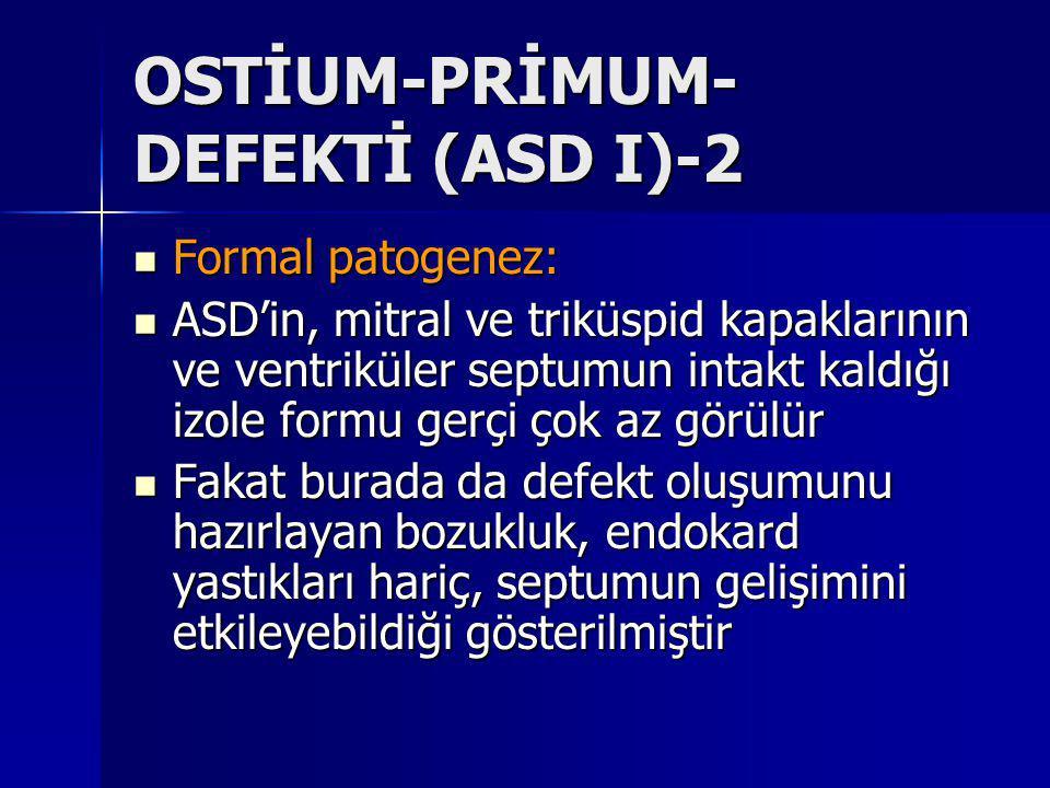 OSTİUM-PRİMUM-DEFEKTİ (ASD I)-2