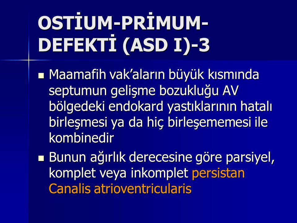 OSTİUM-PRİMUM-DEFEKTİ (ASD I)-3