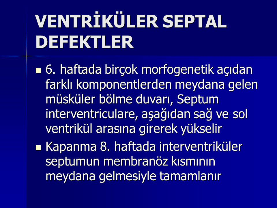 VENTRİKÜLER SEPTAL DEFEKTLER
