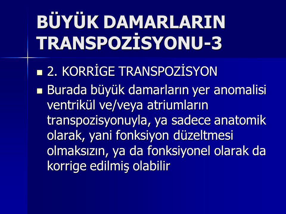 BÜYÜK DAMARLARIN TRANSPOZİSYONU-3