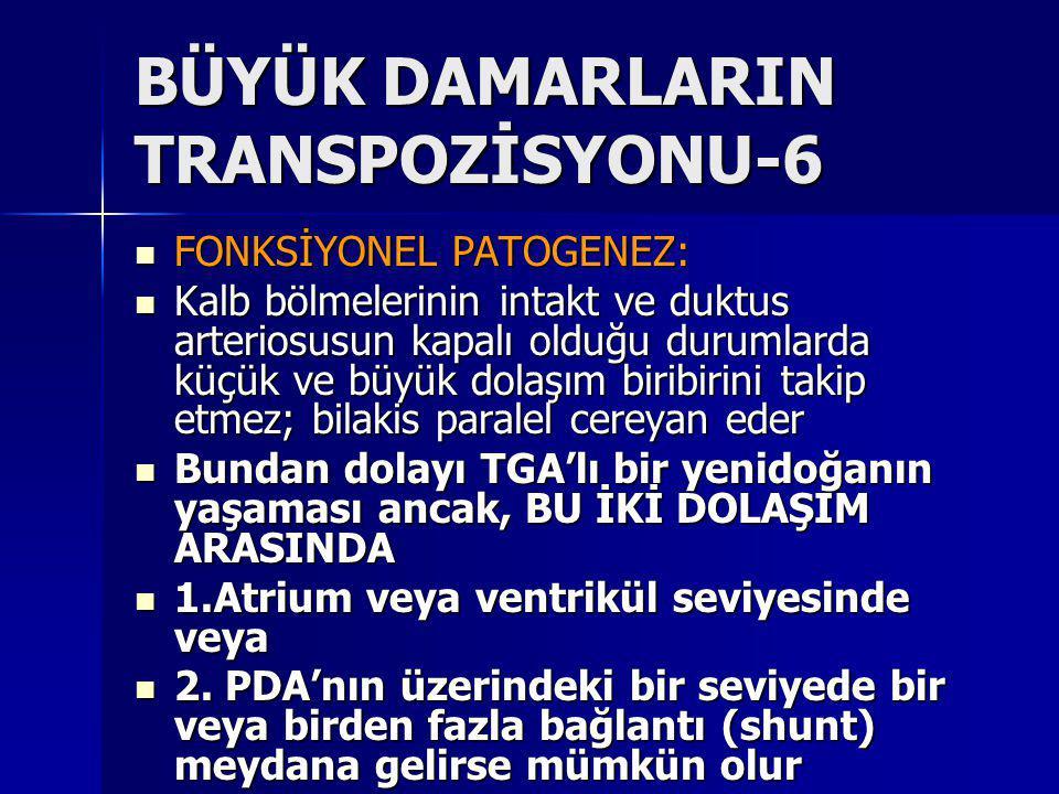 BÜYÜK DAMARLARIN TRANSPOZİSYONU-6