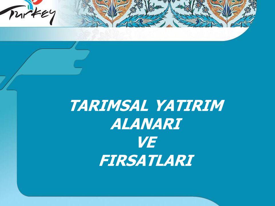 TARIMSAL YATIRIM ALANARI