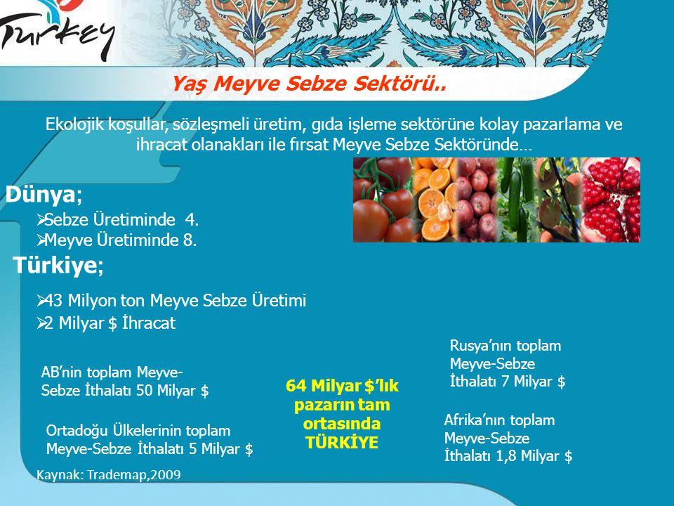 Dünya; Türkiye; Yaş Meyve Sebze Sektörü..