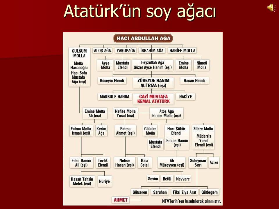 Atatürk'ün soy ağacı