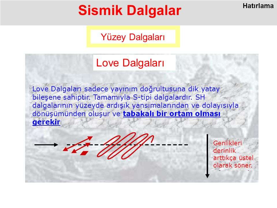 Sismik Dalgalar Love Dalgaları Yüzey Dalgaları Hatırlama