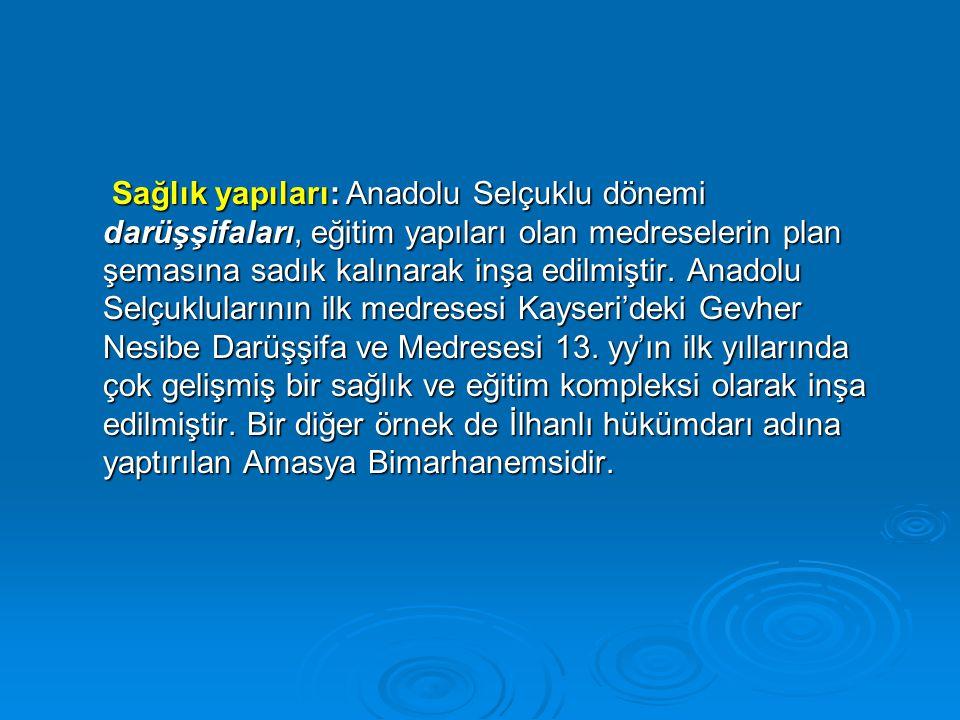 Sağlık yapıları: Anadolu Selçuklu dönemi darüşşifaları, eğitim yapıları olan medreselerin plan şemasına sadık kalınarak inşa edilmiştir.