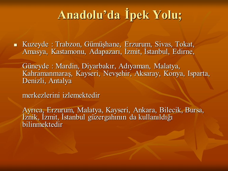 Anadolu'da İpek Yolu;
