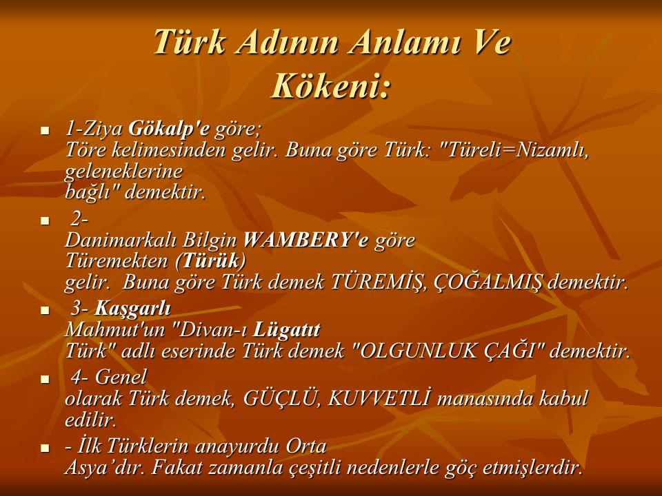 Türk Adının Anlamı Ve Kökeni: