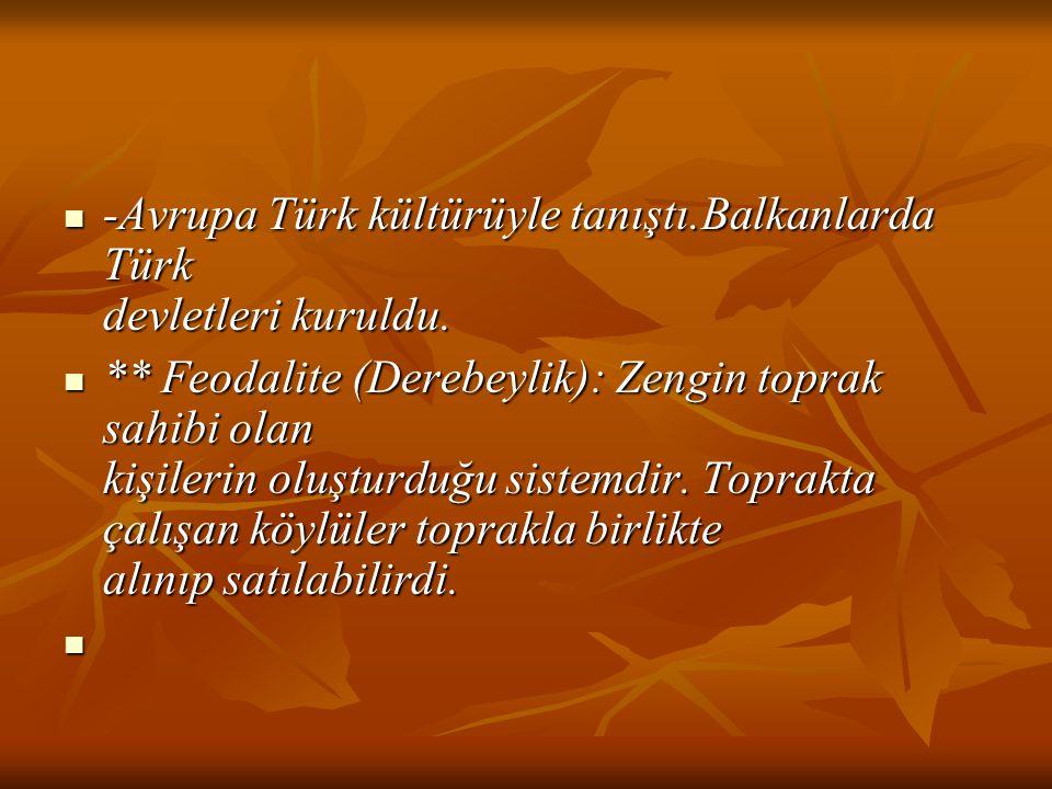 -Avrupa Türk kültürüyle tanıştı.Balkanlarda Türk devletleri kuruldu.