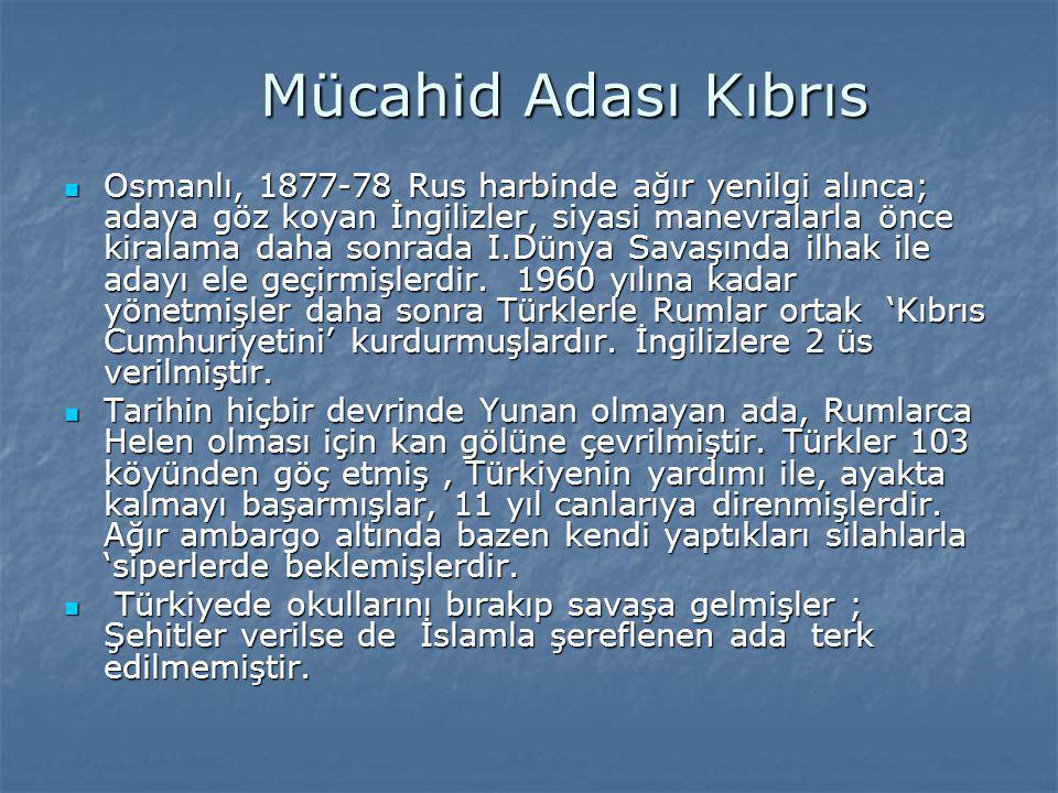 Mücahid Adası Kıbrıs