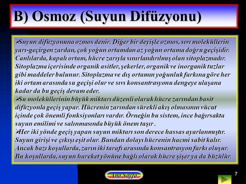 B) Osmoz (Suyun Difüzyonu)
