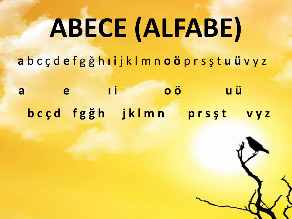 ABECE (ALFABE) a b c ç d e f g ğ h ı i j k l m n o ö p r s ş t u ü v y z. a e ı i o ö u ü.