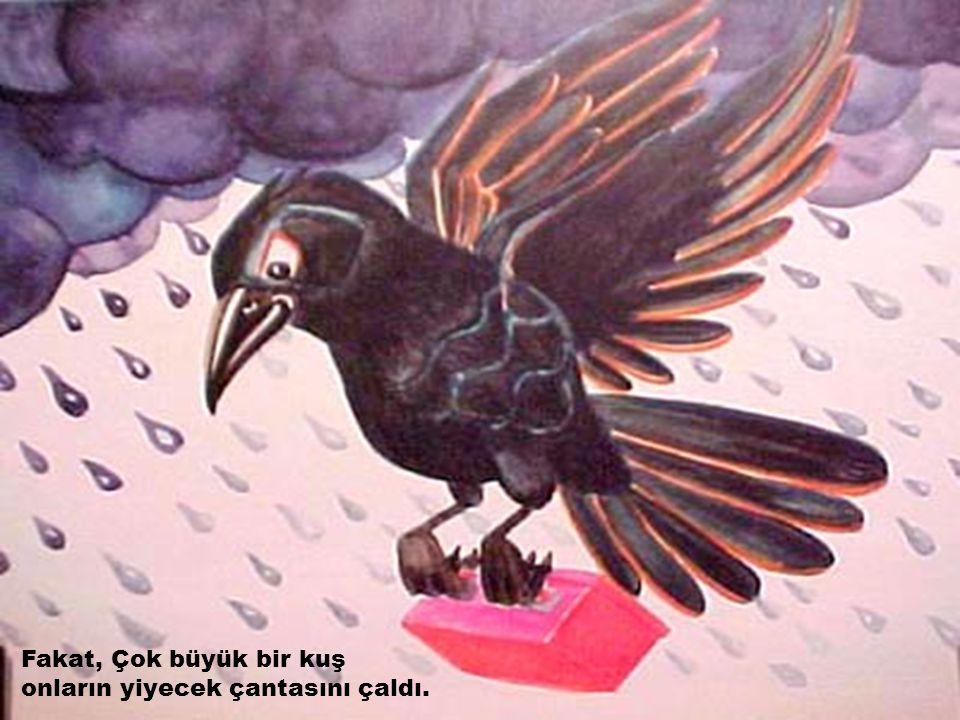 Fakat, Çok büyük bir kuş onların yiyecek çantasını çaldı.