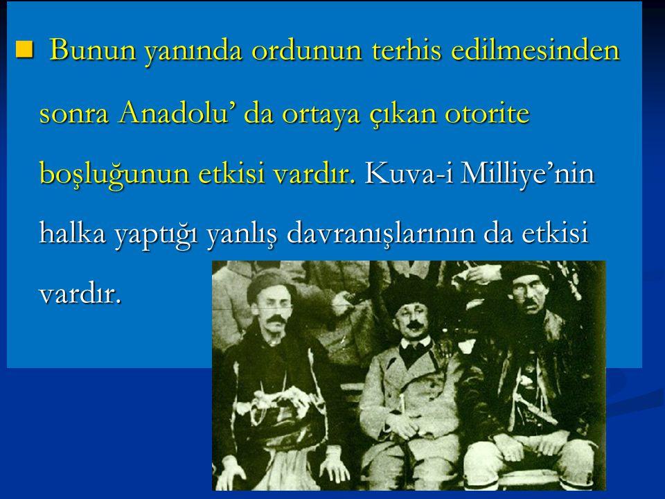 Bunun yanında ordunun terhis edilmesinden sonra Anadolu' da ortaya çıkan otorite boşluğunun etkisi vardır.
