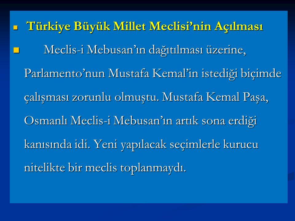 Türkiye Büyük Millet Meclisi'nin Açılması
