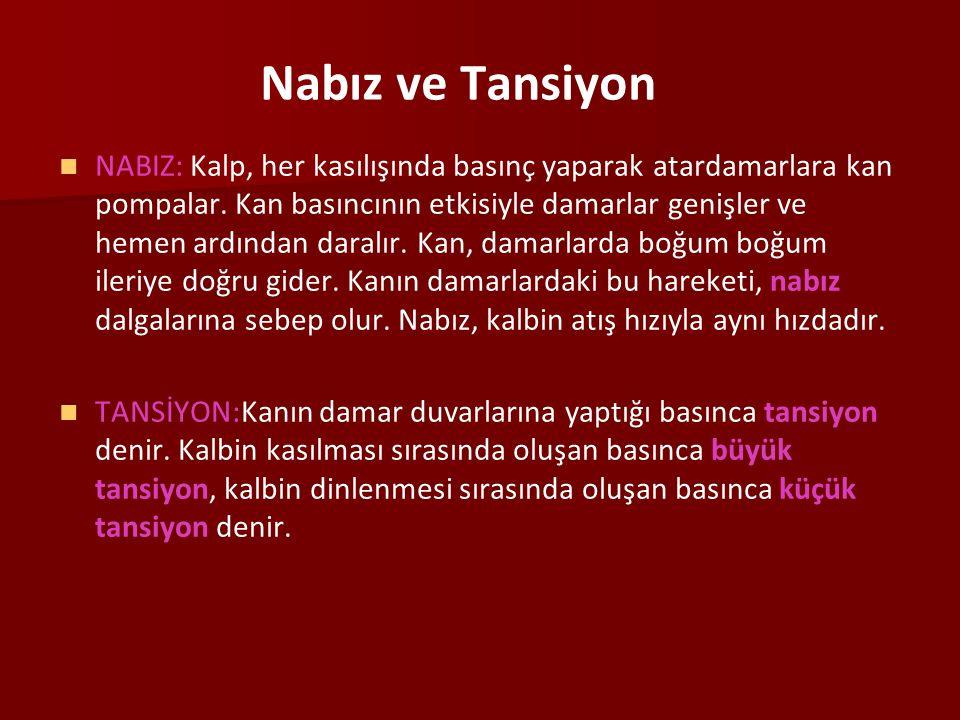 Nabız ve Tansiyon