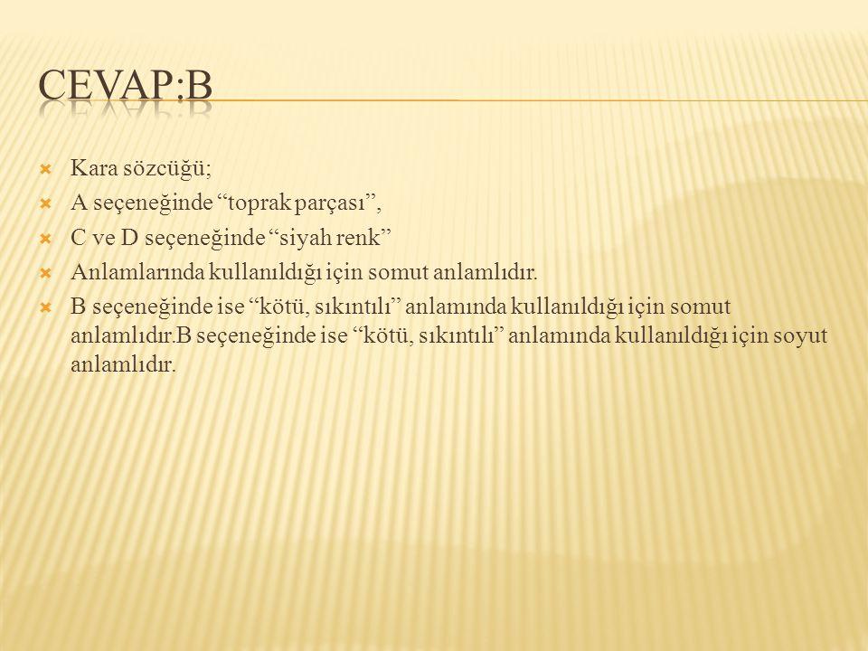 CEVAP:B Kara sözcüğü; A seçeneğinde toprak parçası ,