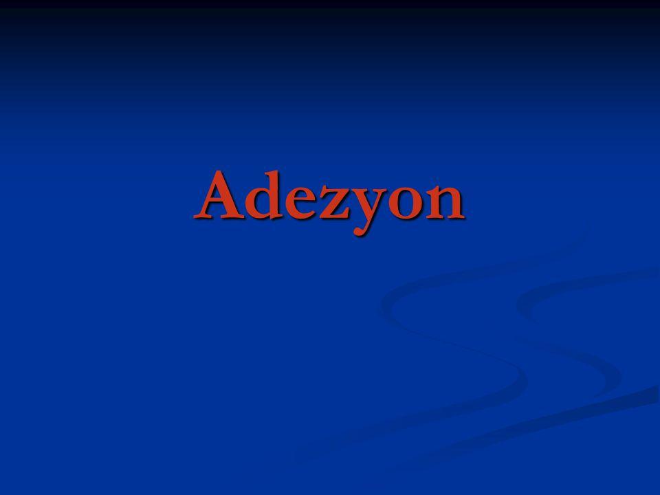 Adezyon