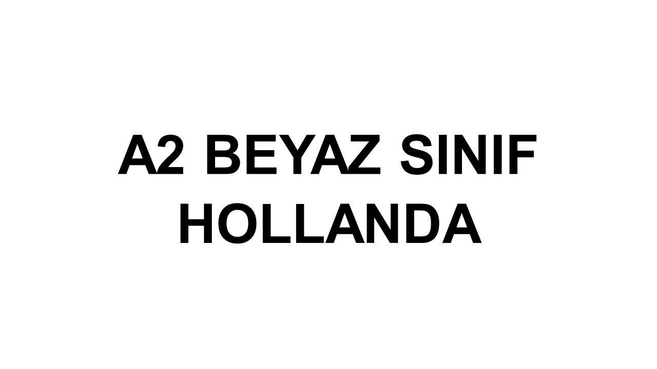 A2 BEYAZ SINIF HOLLANDA