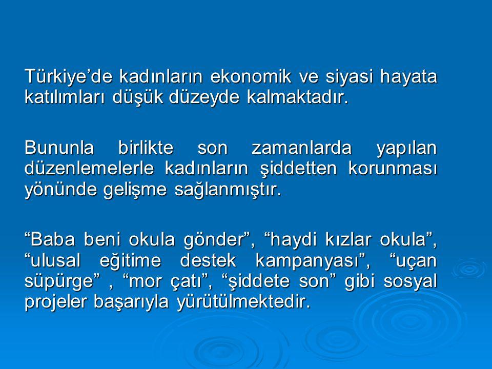 Türkiye'de kadınların ekonomik ve siyasi hayata katılımları düşük düzeyde kalmaktadır.