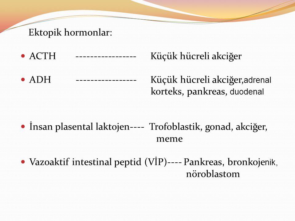 Ektopik hormonlar: ACTH ----------------- Küçük hücreli akciğer. ADH ----------------- Küçük hücreli akciğer,adrenal.
