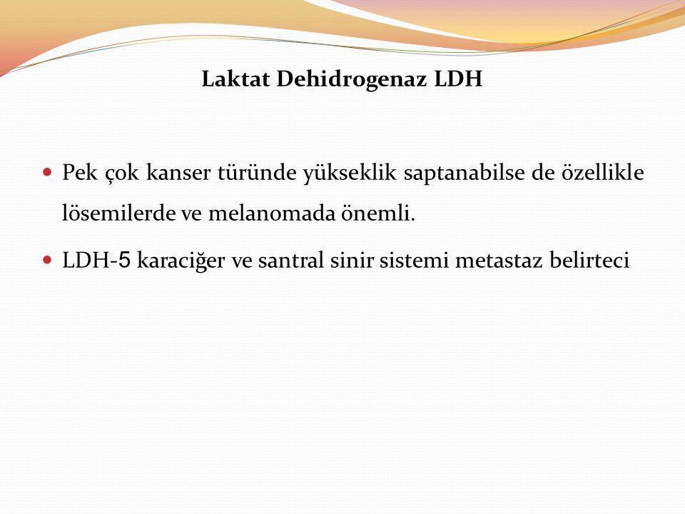 Laktat Dehidrogenaz LDH