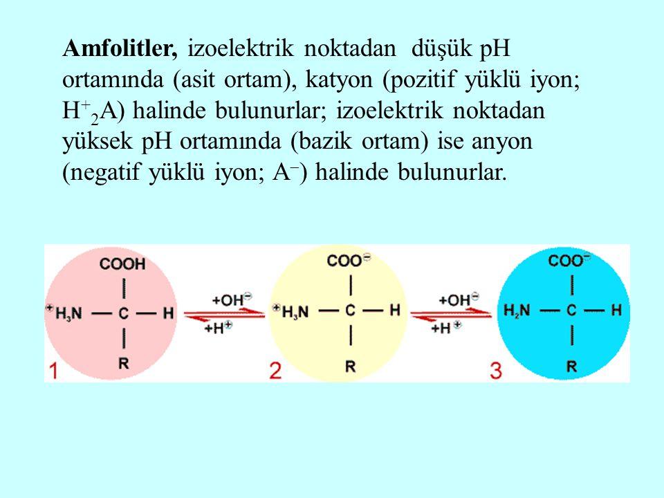 Amfolitler, izoelektrik noktadan düşük pH ortamında (asit ortam), katyon (pozitif yüklü iyon; H+2A) halinde bulunurlar; izoelektrik noktadan yüksek pH ortamında (bazik ortam) ise anyon (negatif yüklü iyon; A) halinde bulunurlar.