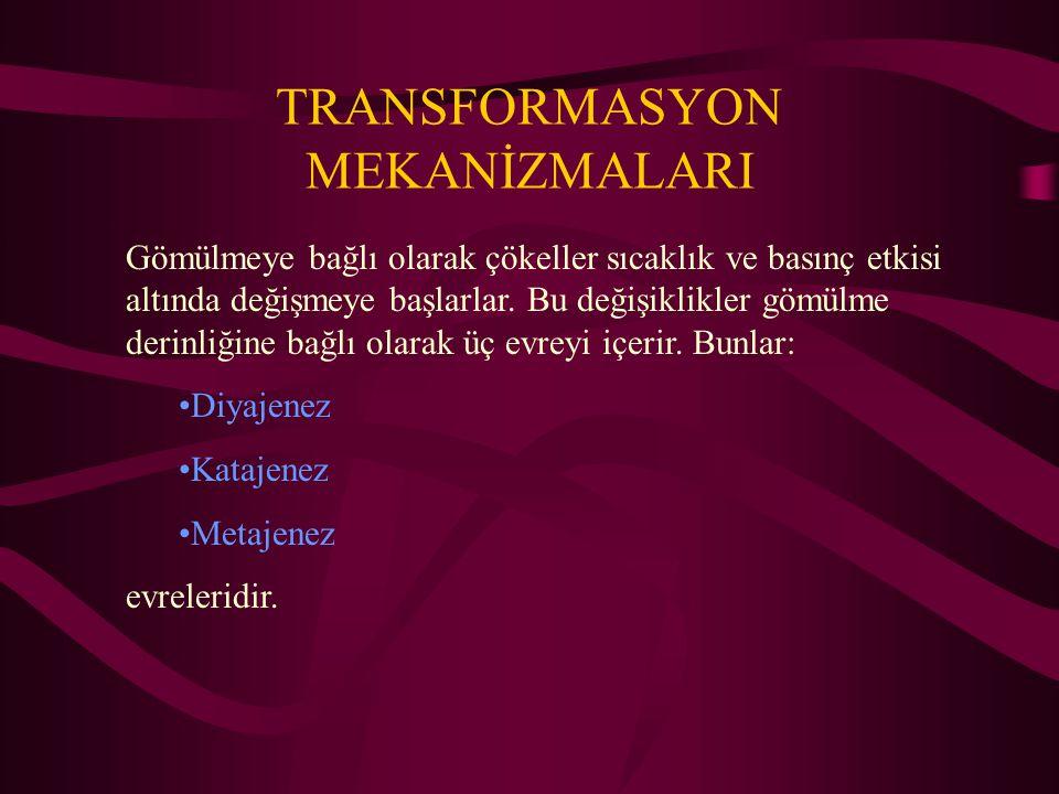 TRANSFORMASYON MEKANİZMALARI