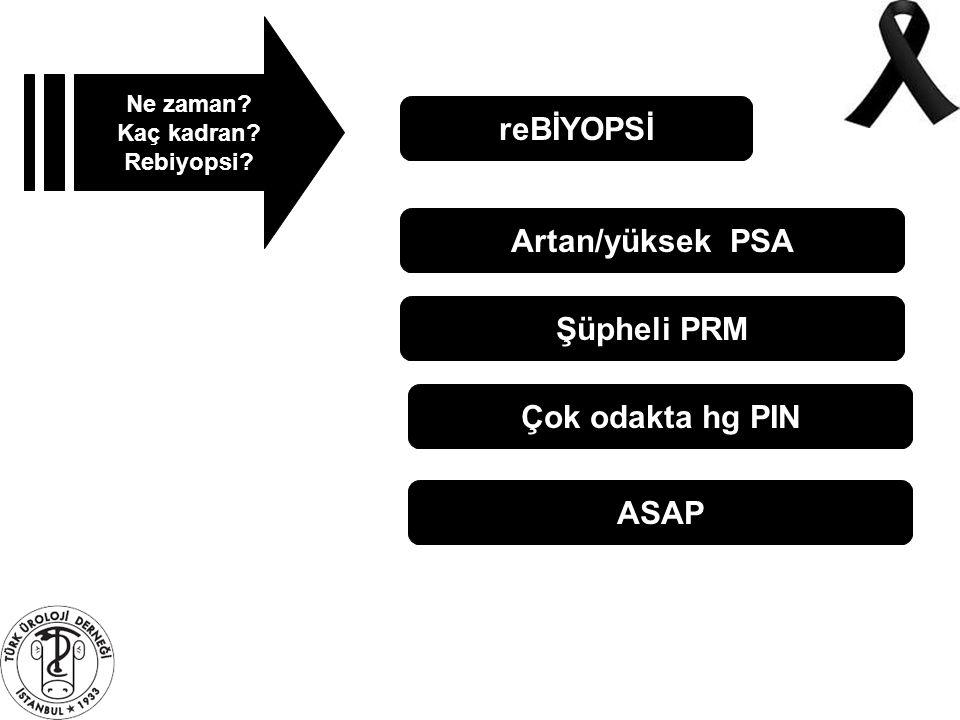 reBİYOPSİ Artan/yüksek PSA Şüpheli PRM Çok odakta hg PIN ASAP
