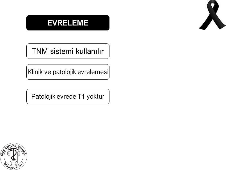 TNM sistemi kullanılır