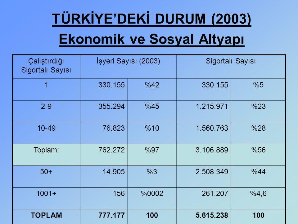 TÜRKİYE'DEKİ DURUM (2003) Ekonomik ve Sosyal Altyapı