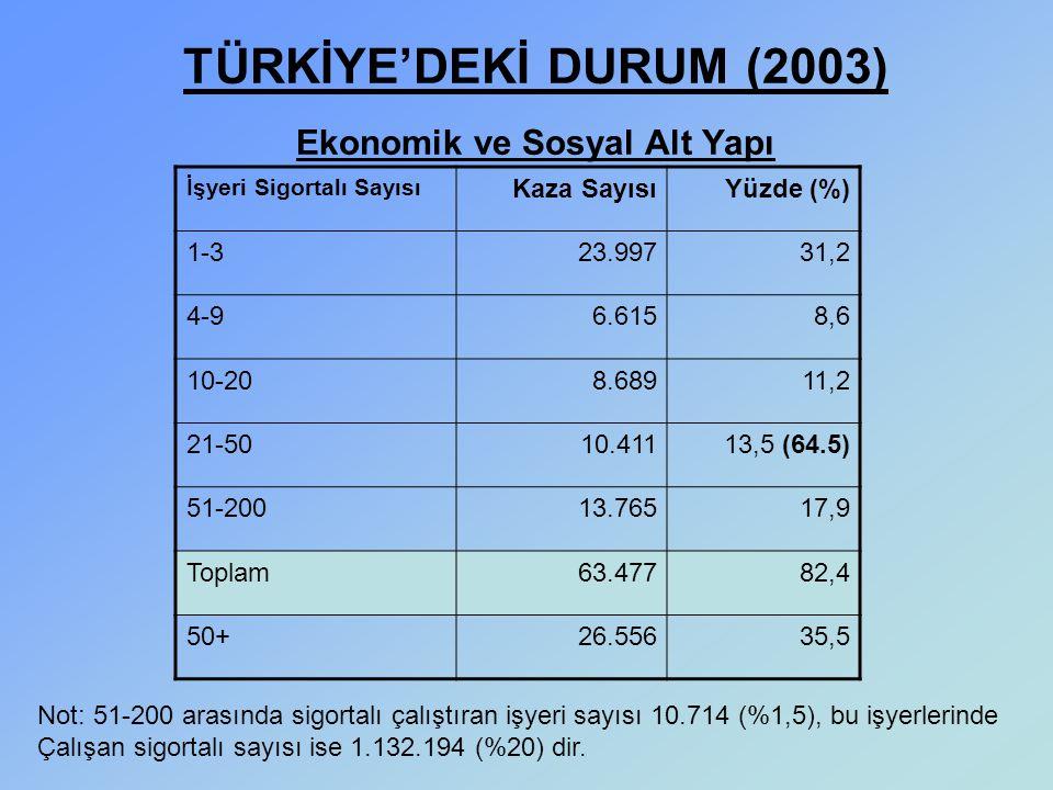 TÜRKİYE'DEKİ DURUM (2003) Ekonomik ve Sosyal Alt Yapı
