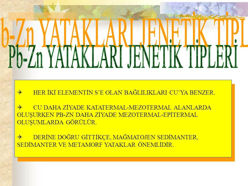 Pb-Zn YATAKLARI JENETİK TİPLERİ
