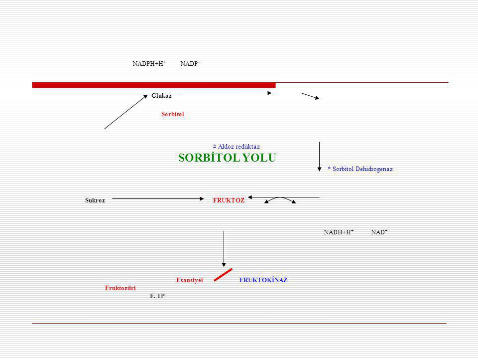 NADPH+H+ NADP+ Glukoz. Sorbitol. # Aldoz redüktaz. SORBİTOL YOLU. * Sorbitol Dehidrogenaz.