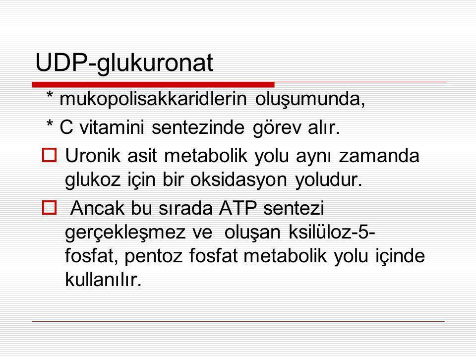UDP-glukuronat * mukopolisakkaridlerin oluşumunda,